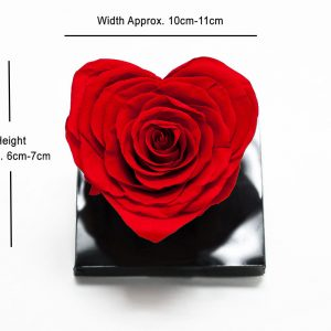 XL Red Ecuadorian Eternity Heart Shape Flowers Preserved Roses 10cm to 11cm
